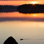 Sunrise over Djurgården