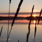 Sunrise over Saltsjön